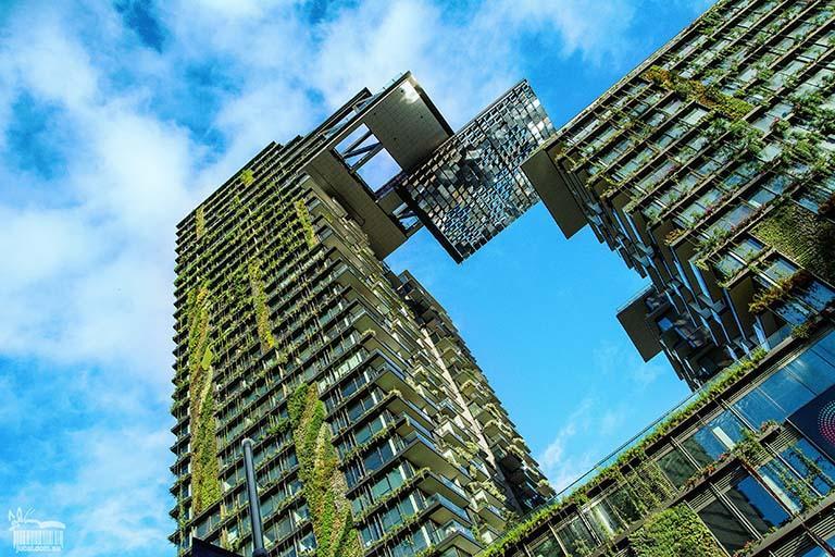 綠色環保建築大樓